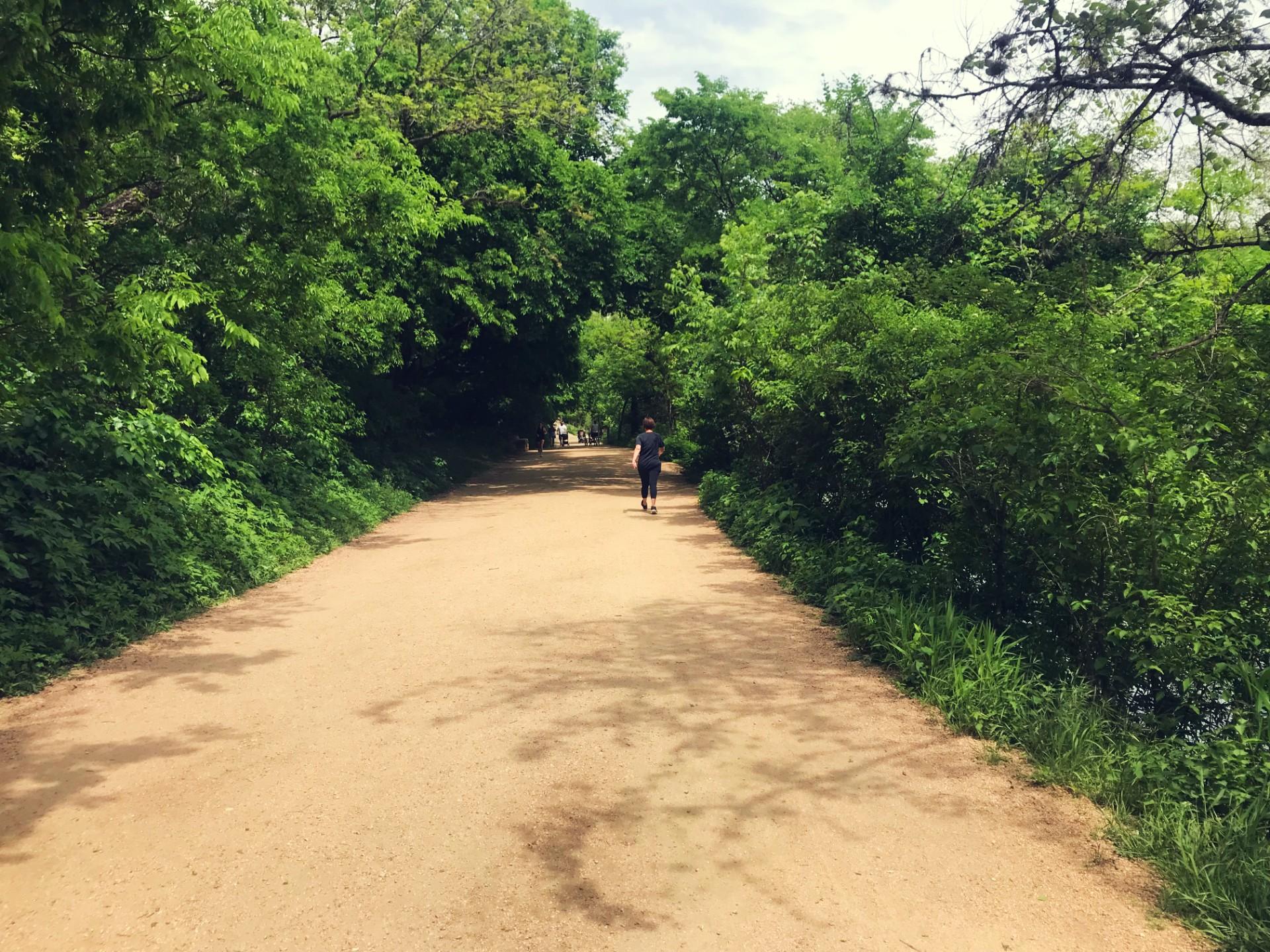 ladybird lake trail