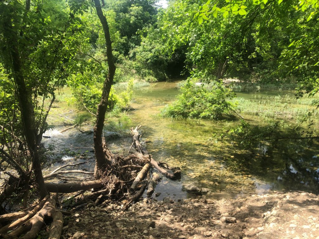 Beautiful Barton Creek