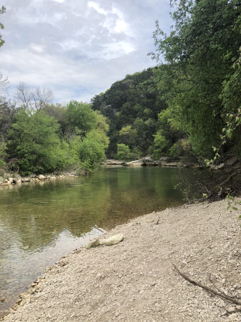 The banks of Barton Creek