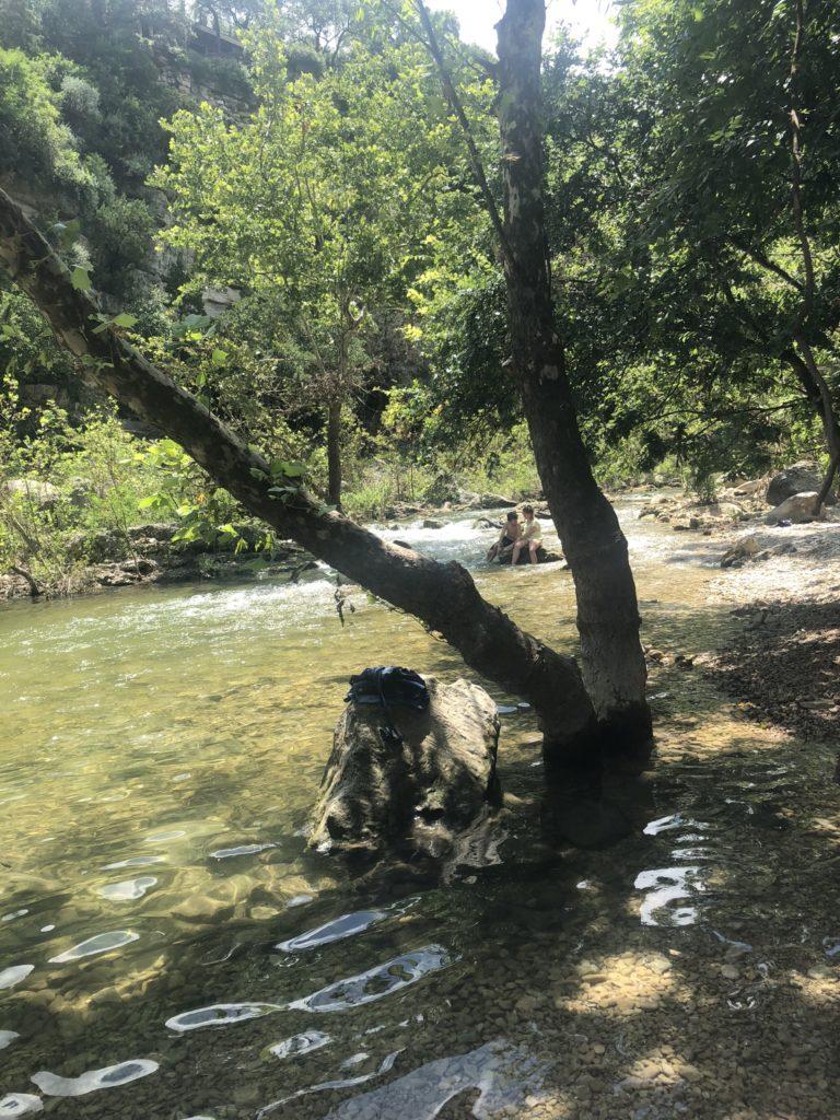 Sun Dapples Barton Creek